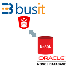 Busit Oracle Nosql