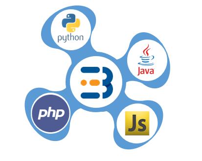 Busit Python